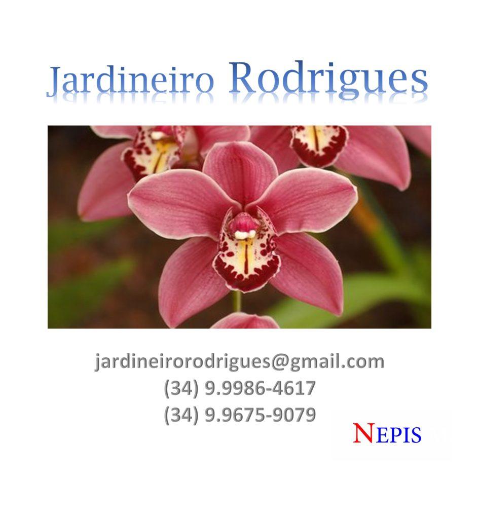 jardineiro-rodrigues-nepis-1