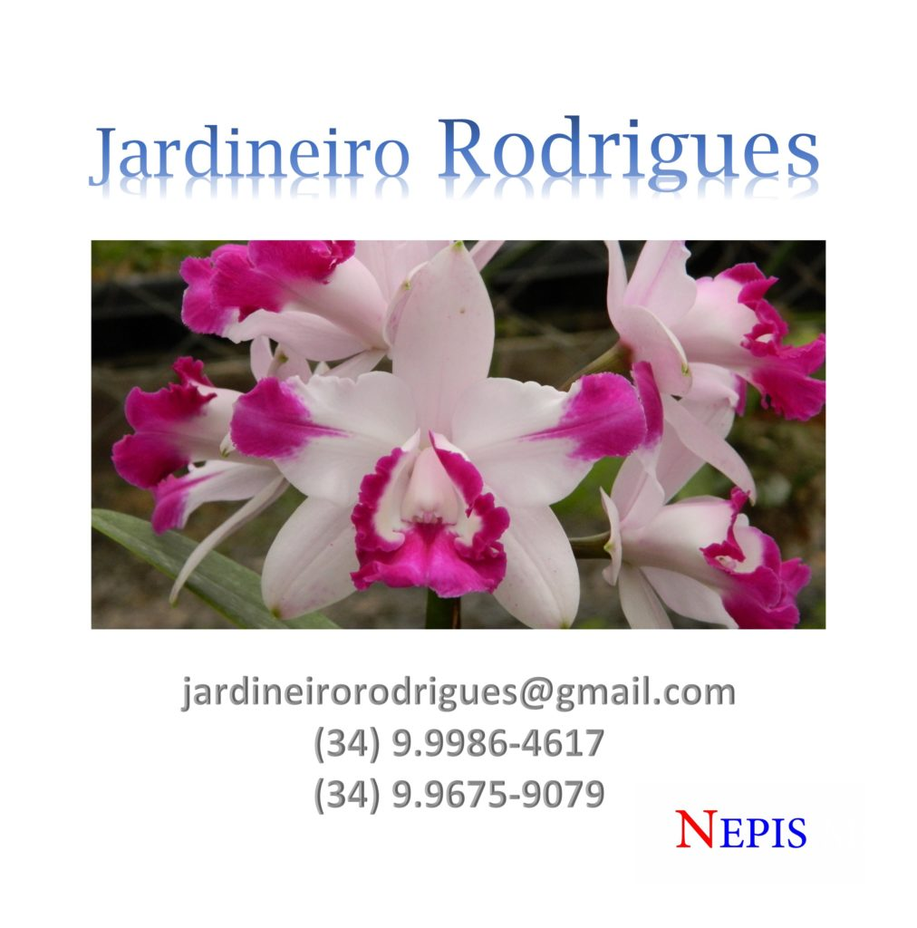 nepis-jardineiro-rodrigues-2