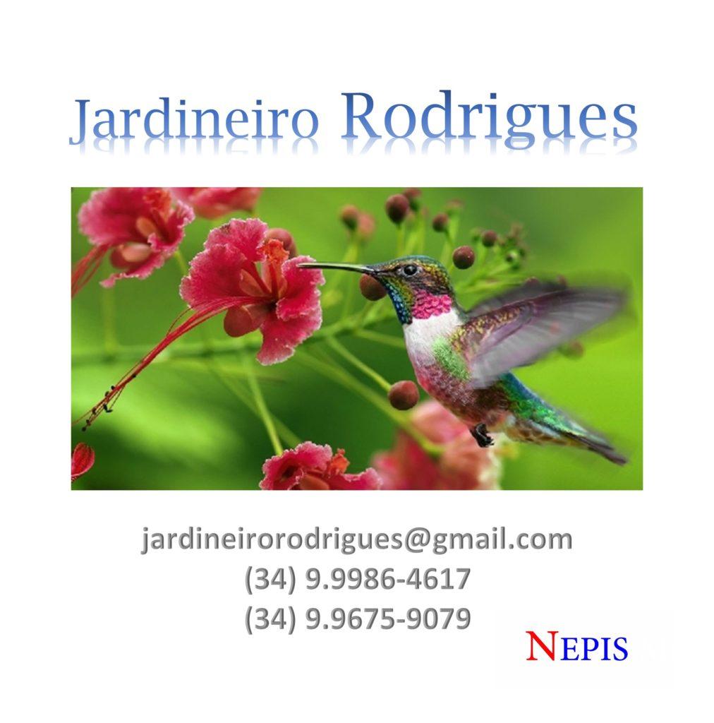 nepis-jardineiro-rodrigues-3