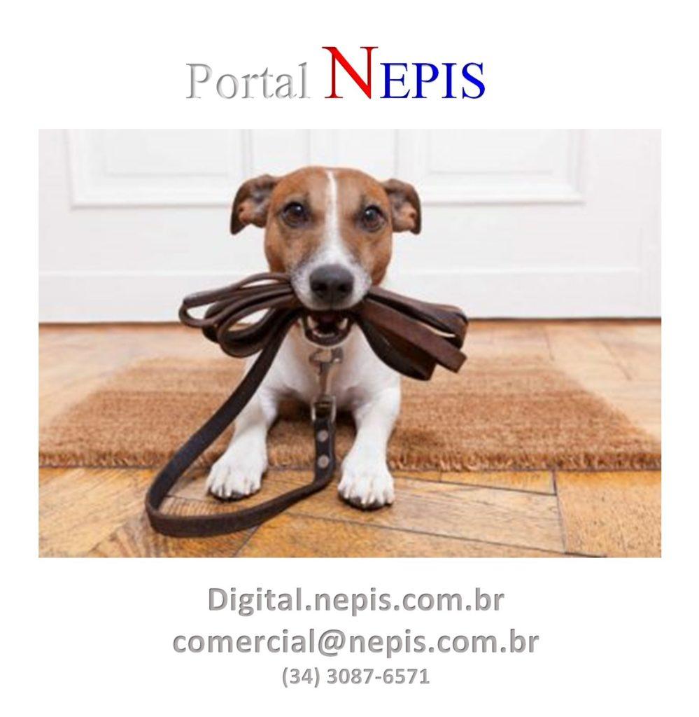 Portal NEPIS Redes saociais III (2)