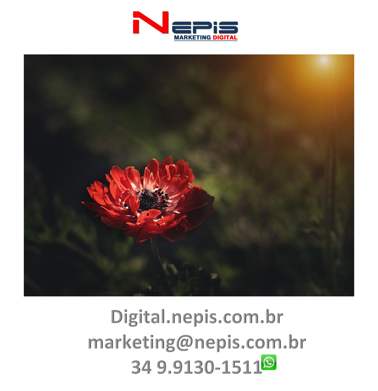 Redes sociais NEPIS marketing Digital hope