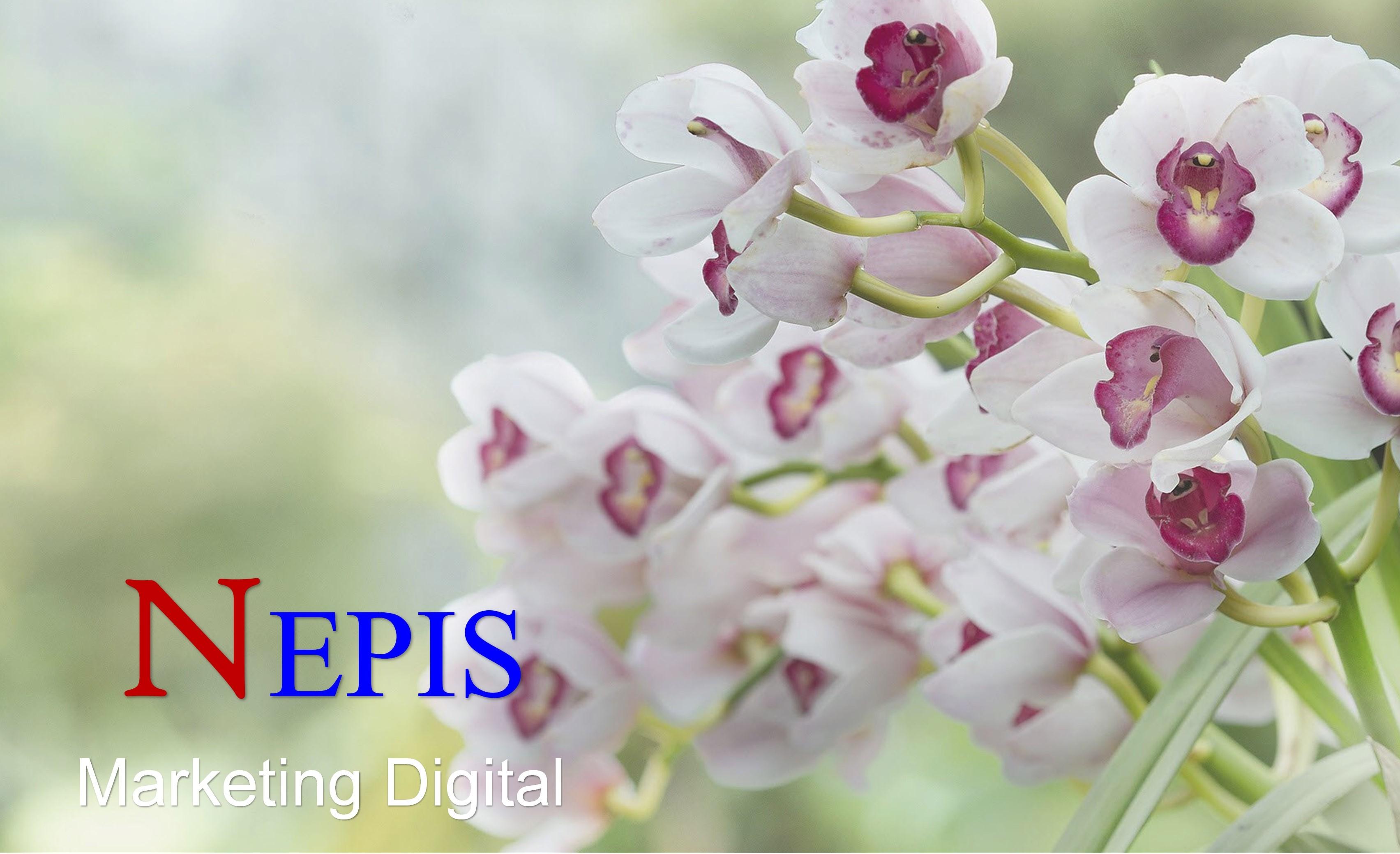 NEPIS Digital Cadastra-se