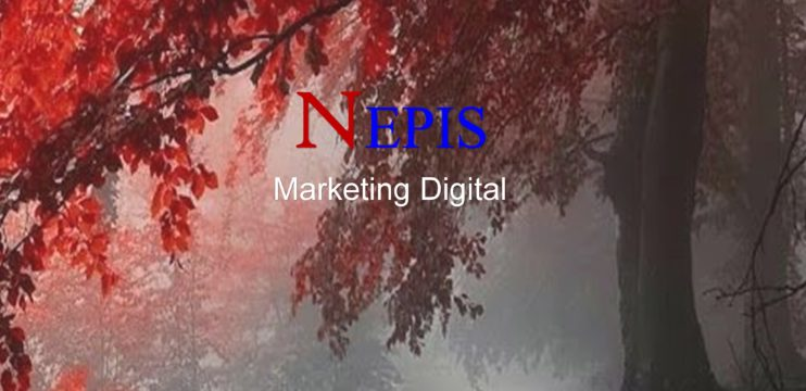 Porque  colocar sua empresa nas redes sociais – NEPIS Digital