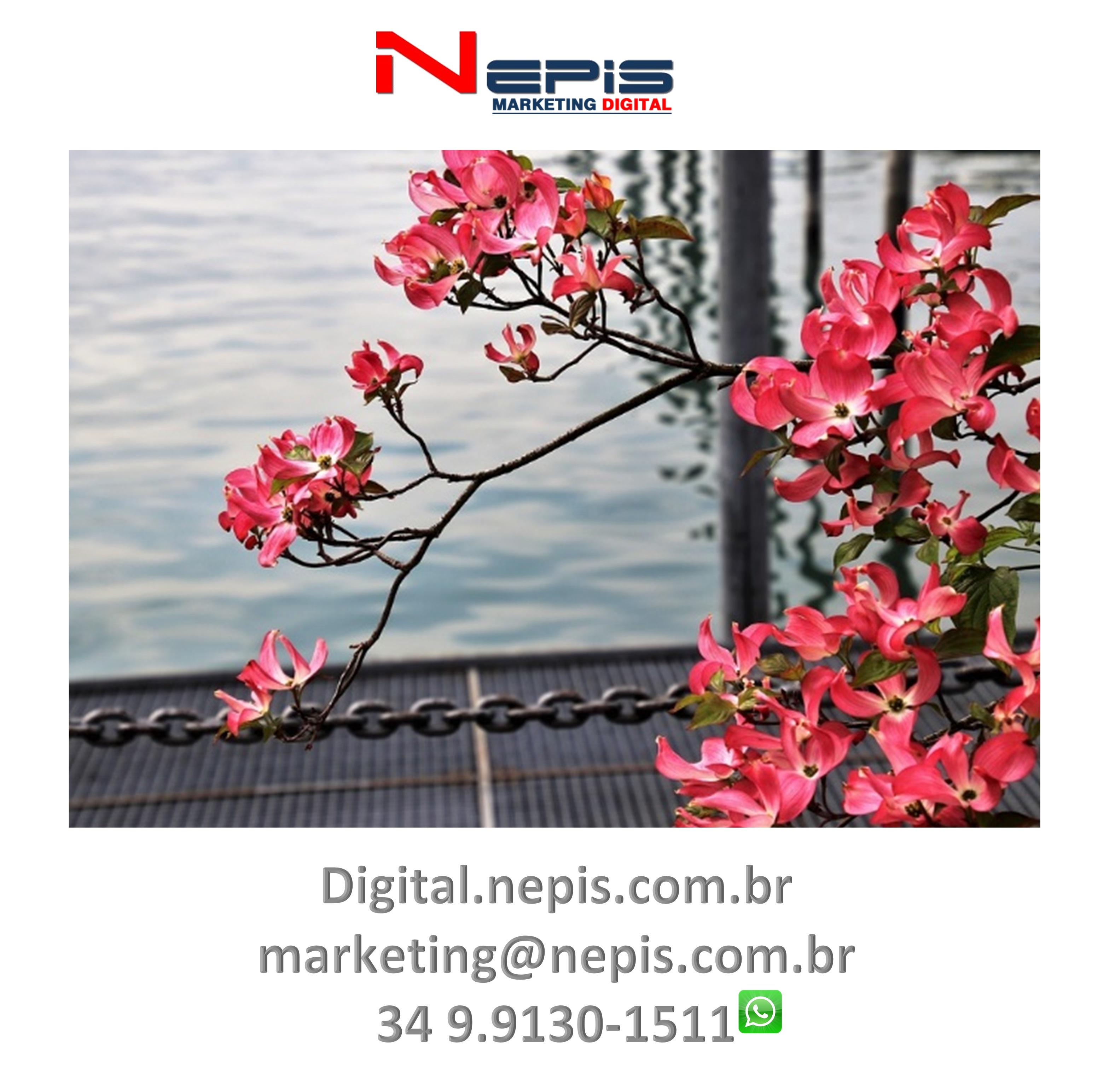 NEPIS Digital Publicidade camapanha flores 1