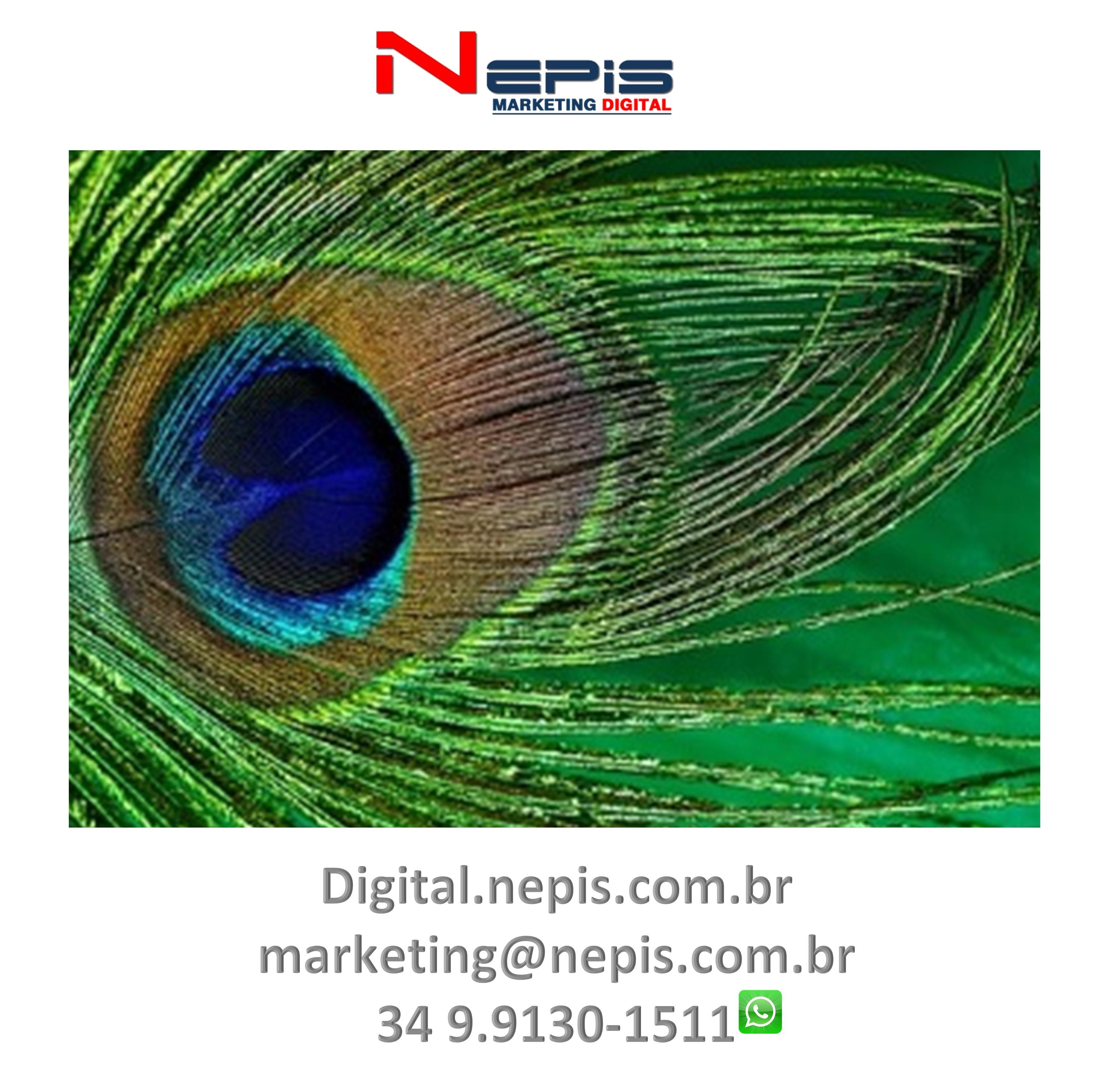 NEPIS Digital Publicidade camapanhas 2